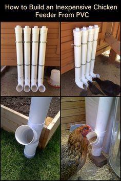 Photo of Wie man einen billigen Hühnerfutterautomat aus PVC baut