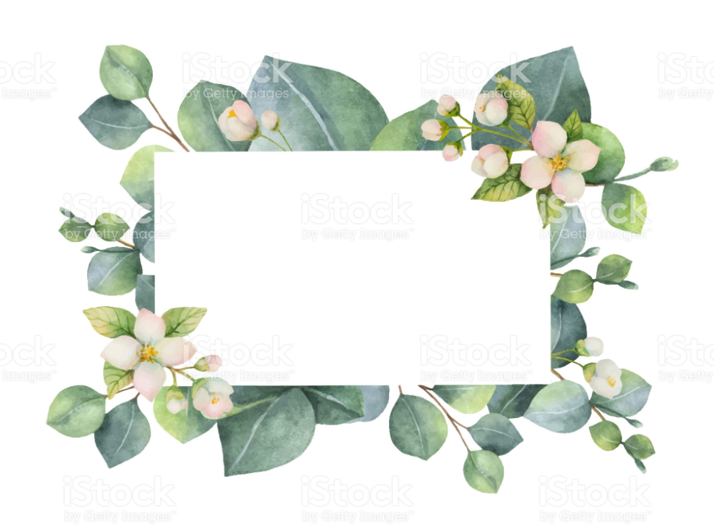 Watercolor Vector Green Floral Card With Eucalyptus Leaves Jasmine Floral Cards Free Vector Art Floral