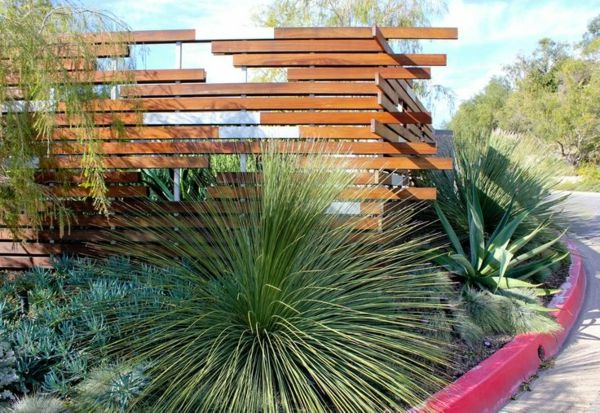 Wooden privacy fence ideas modern garden design cacti palm trees ...