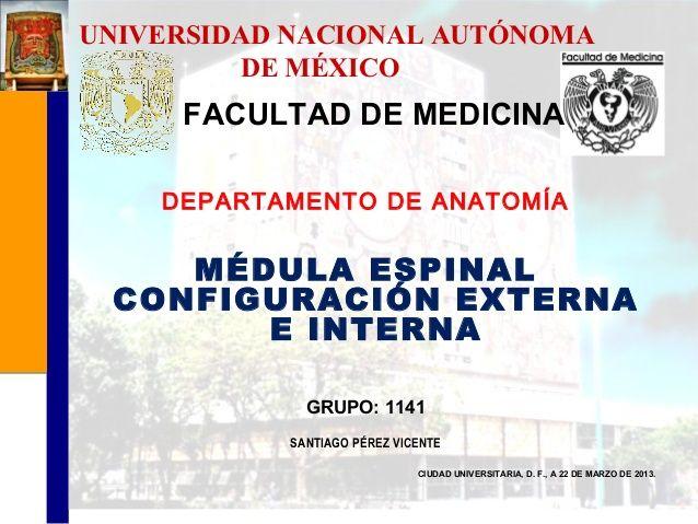 MÉDULA ESPINAL CONFIGURACIÓN EXTERNA E INTERNA by Vicente Santiago via slideshare