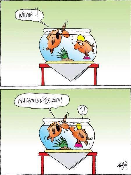 haha droge humor | droge humor - funny, funny cartoons en funny texts