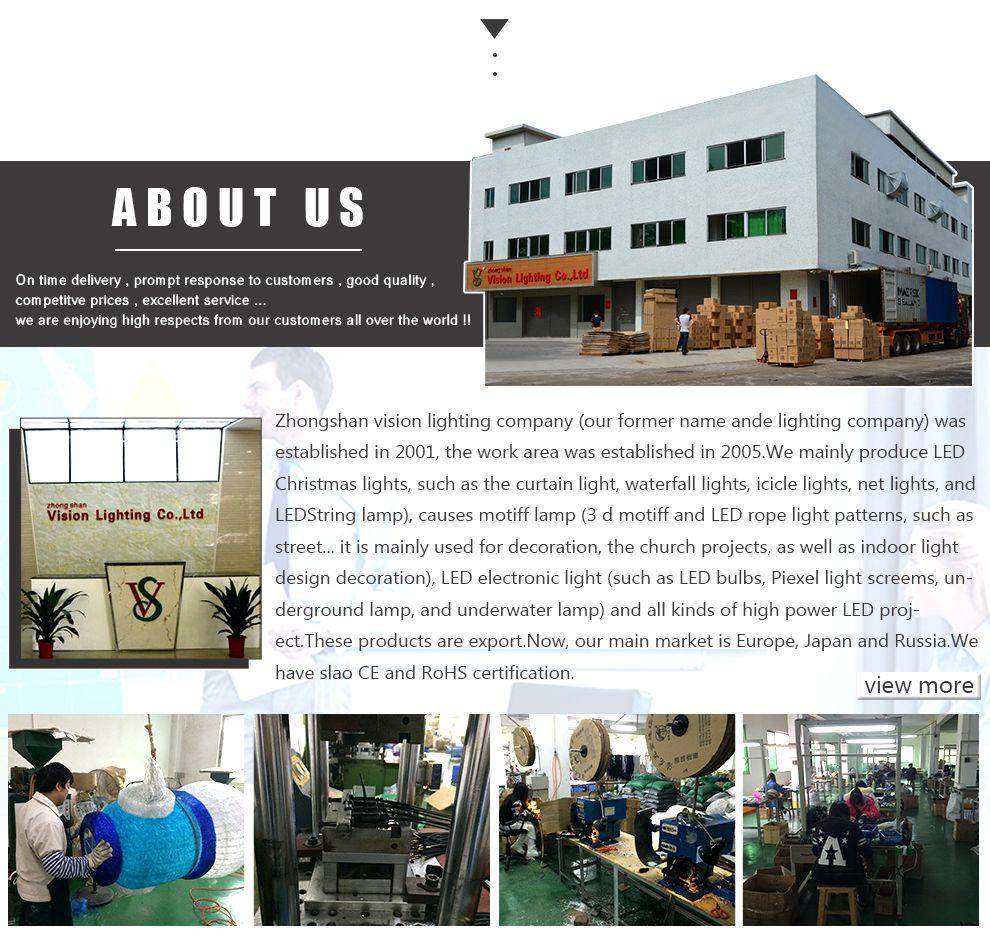Zhongshan Vision Lighting Factory - LED Christmas Lights,LED Lights ...