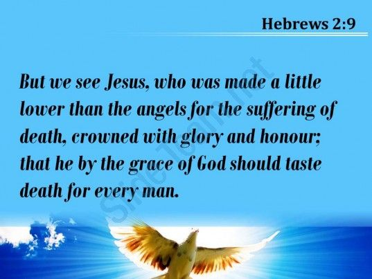 hebrews 2 9 the grace of god he might powerpoint church sermon Slide05  http://www.slideteam.net/