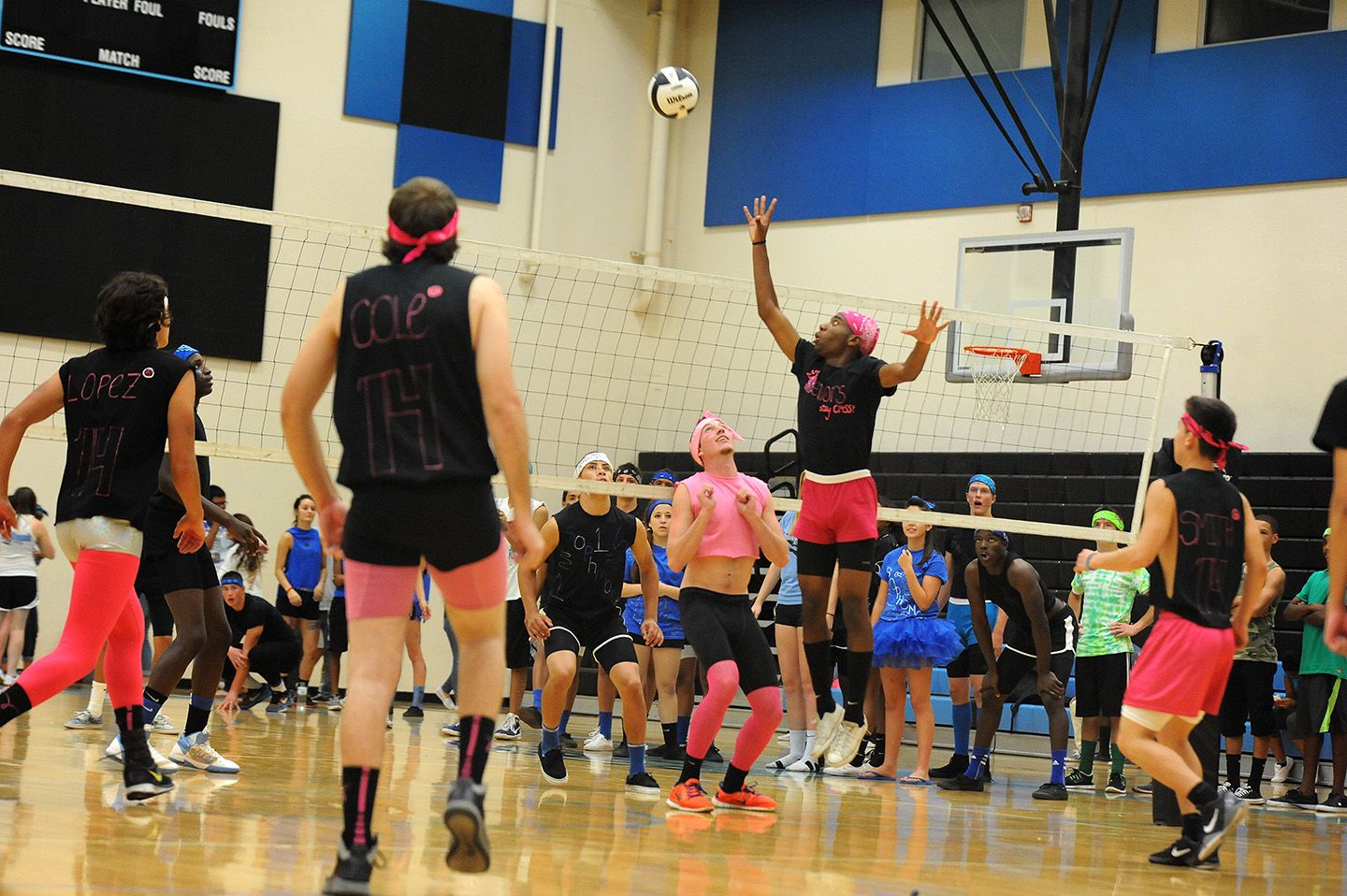 Seniors Pink Compete Against Sophomores Blue Oct 2 During A Peach Fuzz Volleyball Game At Vista Ridge High S Volleyball Tournaments Powder Puff Volleyball