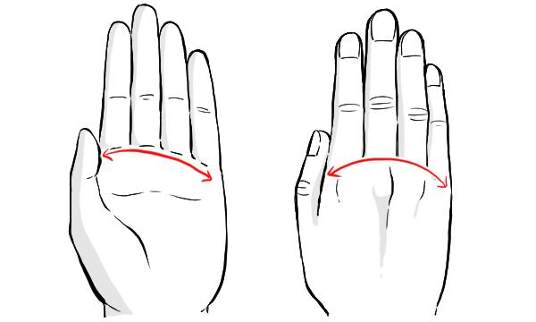 手のイラストの描き方のコツ 描くポイントから注意点まで紹介 指の形