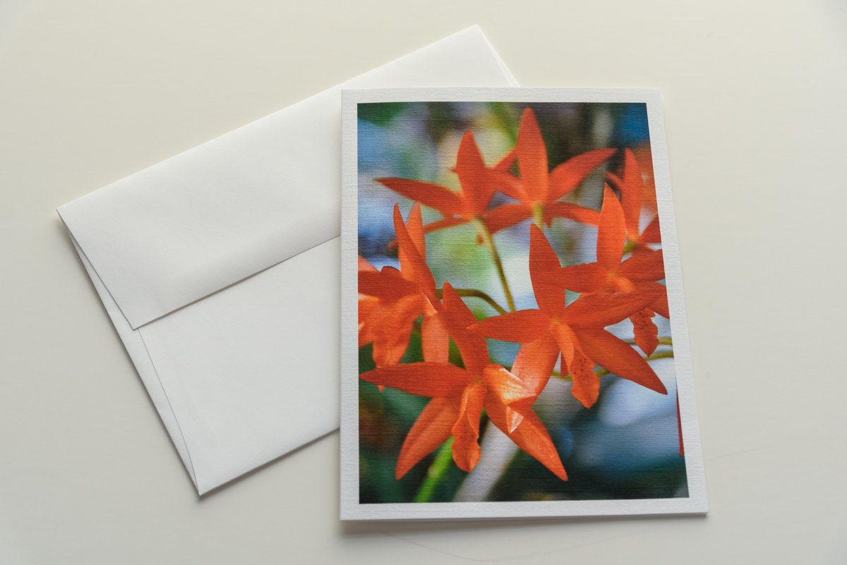 Orange Orchid Flower Note Card Floral Note Card Note Card Blank