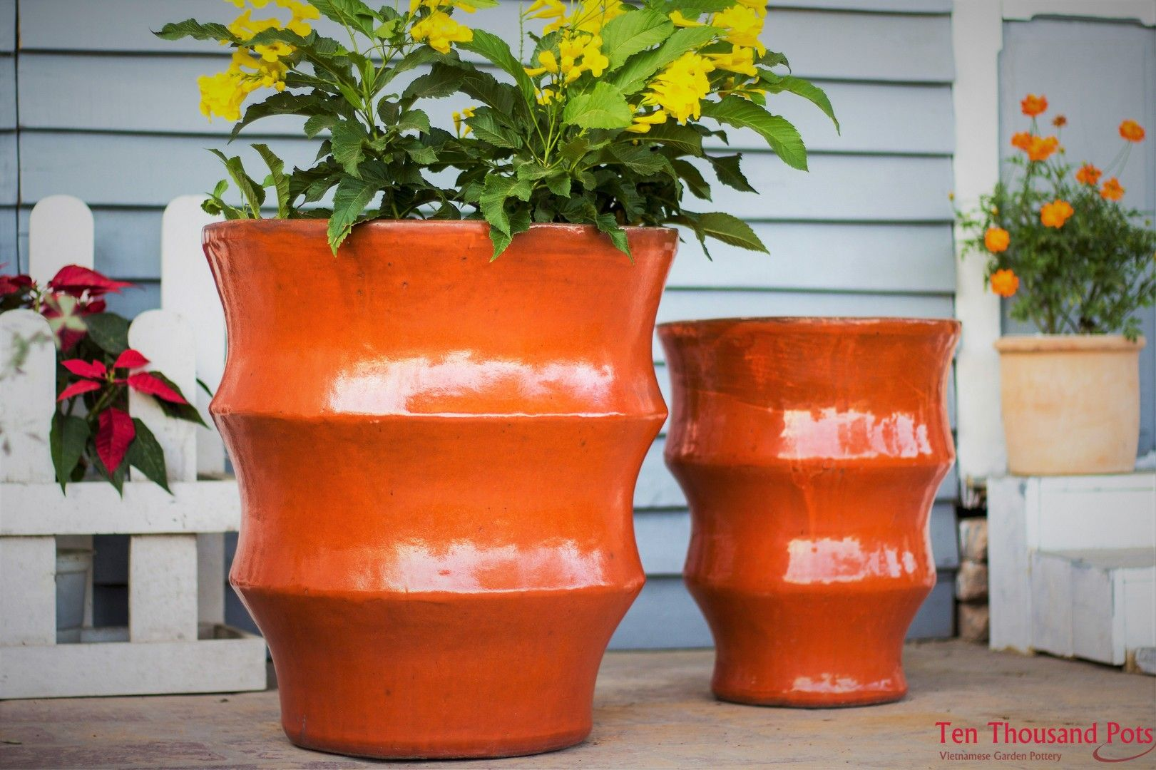 Plant And Pottery Outlet Manufacturer