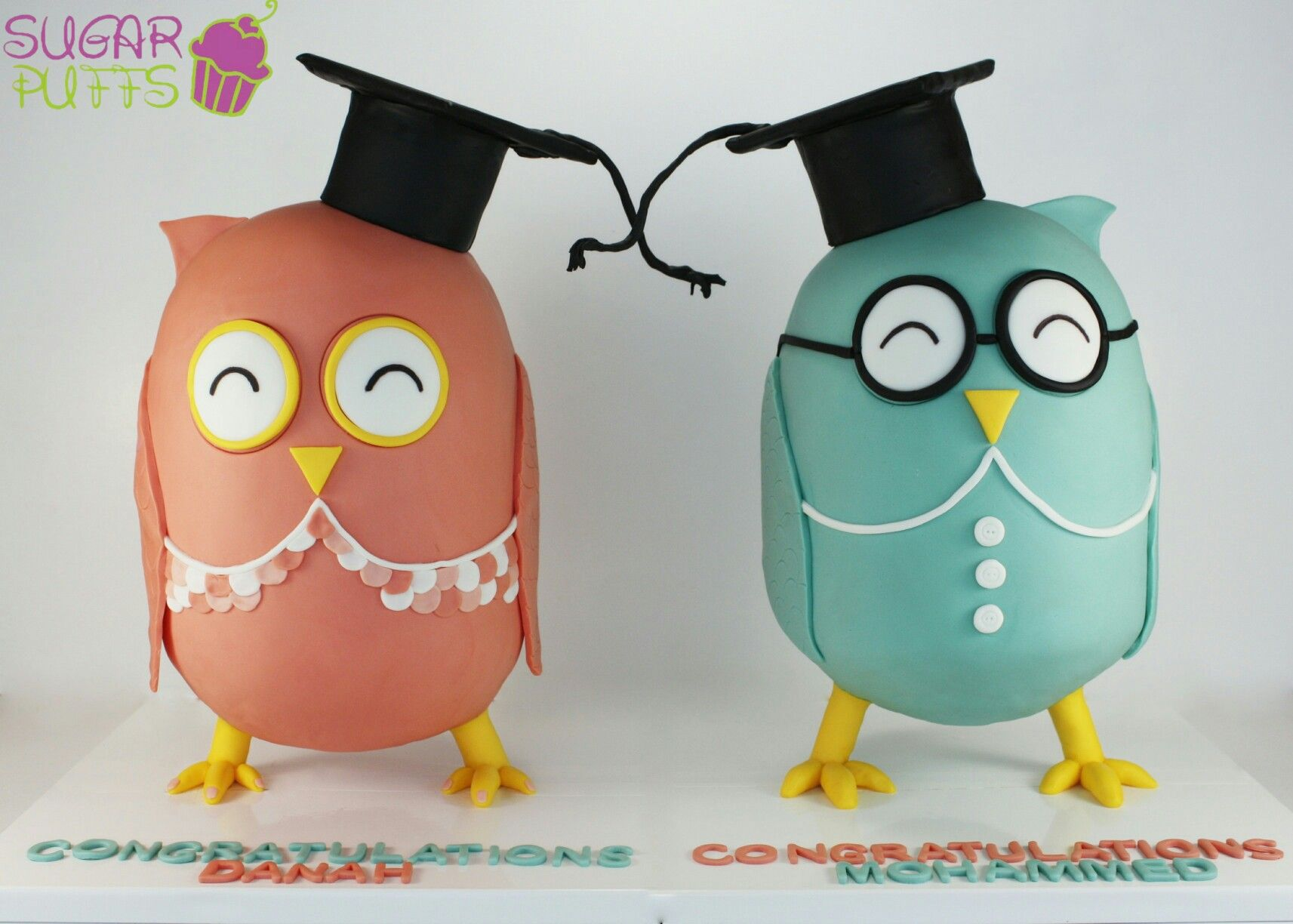Owls gravity defying cakes. Owl Graduation 3D Cake by ...