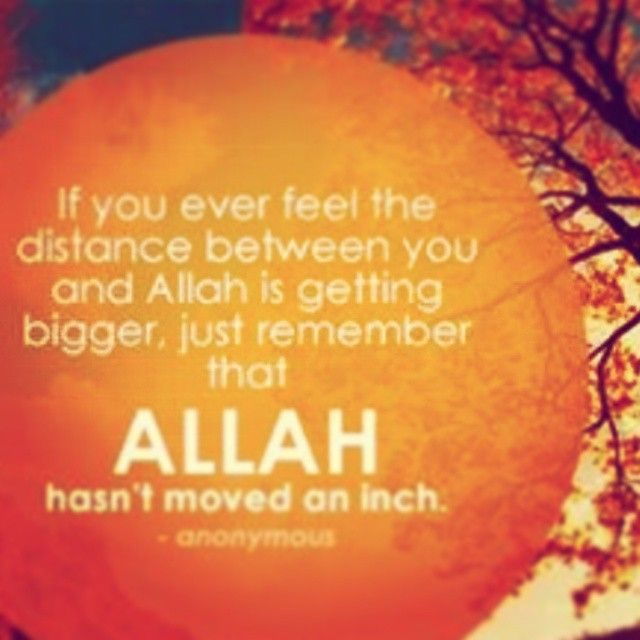 Allah Hasn T Moved An Inch Get Back To Him If Not Now Then When Allah Moving Feelings