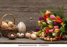 still life with eggs - Google Search
