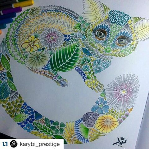 Coloring Book For Adults Tropical World