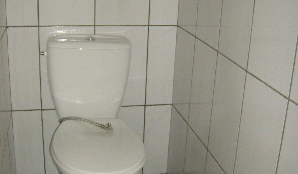 Castorama Peinture Carrelage Toilet Basement Stairs Bathtub