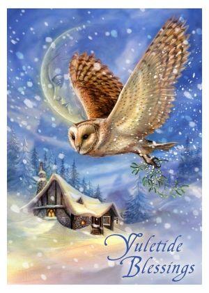 Greeting card snow bringer yuletide owl briar yuletide greeting card snow bringer yuletide blessings owl briar the m4hsunfo