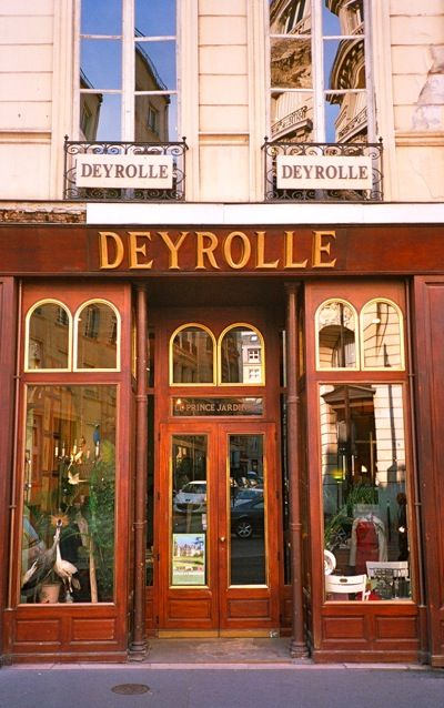 deyrolle taxidermy 46 rue du bac because when you shop in paris the globe pinterest. Black Bedroom Furniture Sets. Home Design Ideas