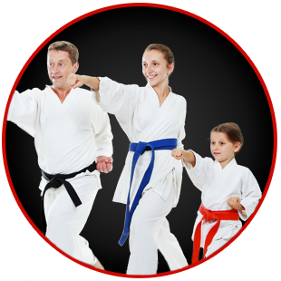 Martial Arts Family Classes At Martial Arts Fitness Academy Ave Maria Fl Martial Arts Workout Martial Arts Kids Martial Arts
