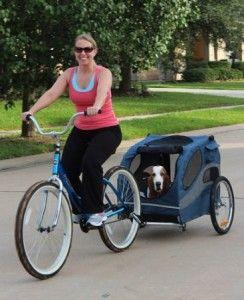 Pet Bike Trailer Reviews Solvit Houndabout Pet Bicycle Trailer