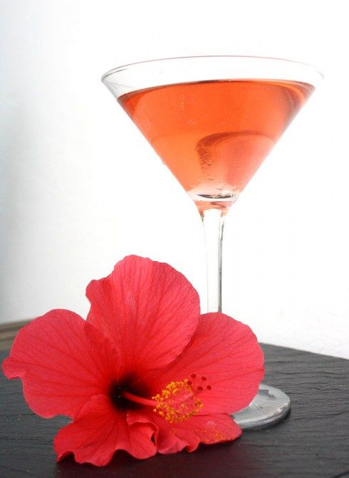 Pink Hibiscus cocktail.