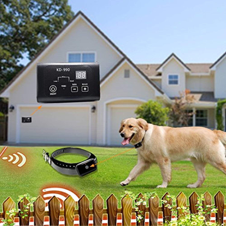 AngelaKerry 2 X Electronic Dog Fence System, InGround