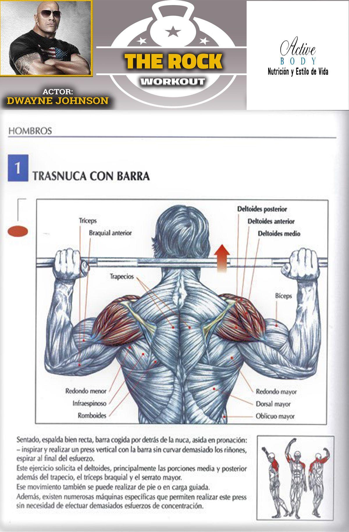 Los Mejores Ejercicios Para Desarrollar Los Hombros Shoulder Workout Chest Workouts At Home Gym
