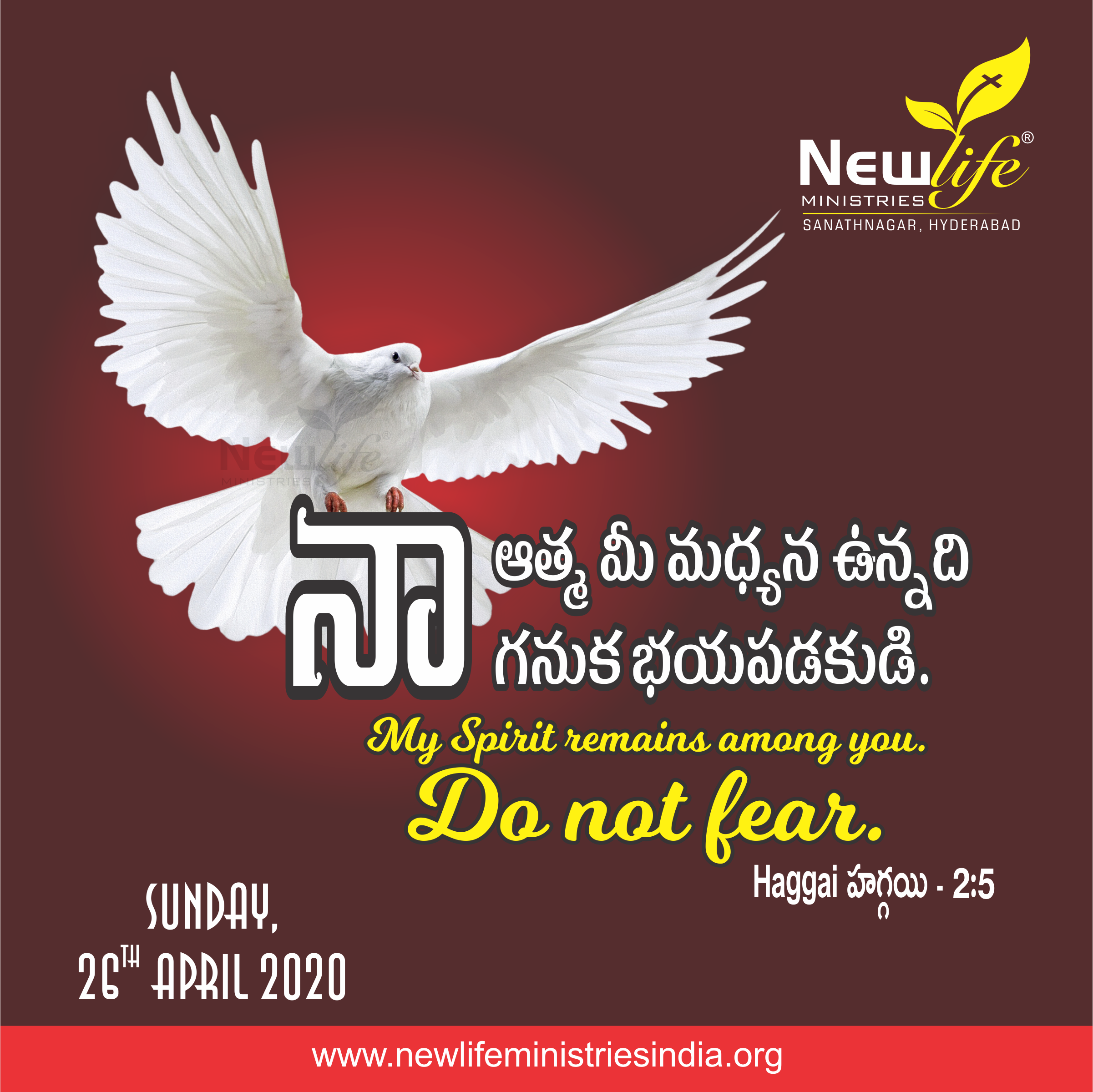 Haggai హగ్గయి 25 in 2020 Do not fear, My spirit, Fear