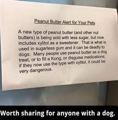 Warning About Peanut Butter In 2020 Death Of A Pet Xylitol Dog Nutrition