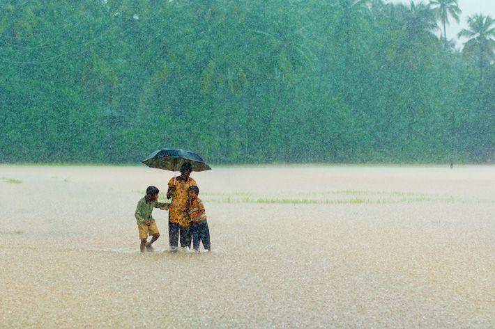 india monsoon season rain,  Kumta, Karnataka, India