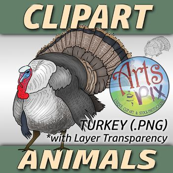Arts Amp Amp Pix Has Created A Fun And Colorful Clipart Png Image Of A Turkey This High Resolution Png Clipar Clip Art Animal Clipart Art Teaching Resources