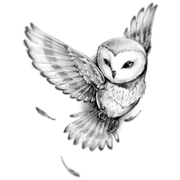 Lovely Beautiful Gray Owl Style Black And Gray Color Gray Tags Cute Beautiful Owl Tattoo Drawings Owl Tattoo Barn Owl Tattoo