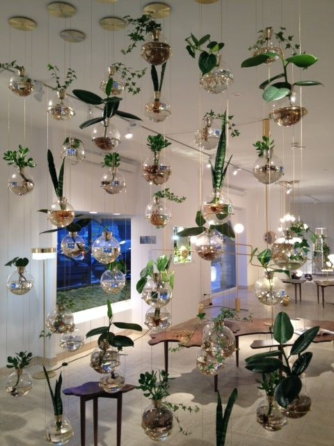 Fun with modern hanging glass planters - Fun With Modern Hanging Glass Planters To Cool!!! Pinterest
