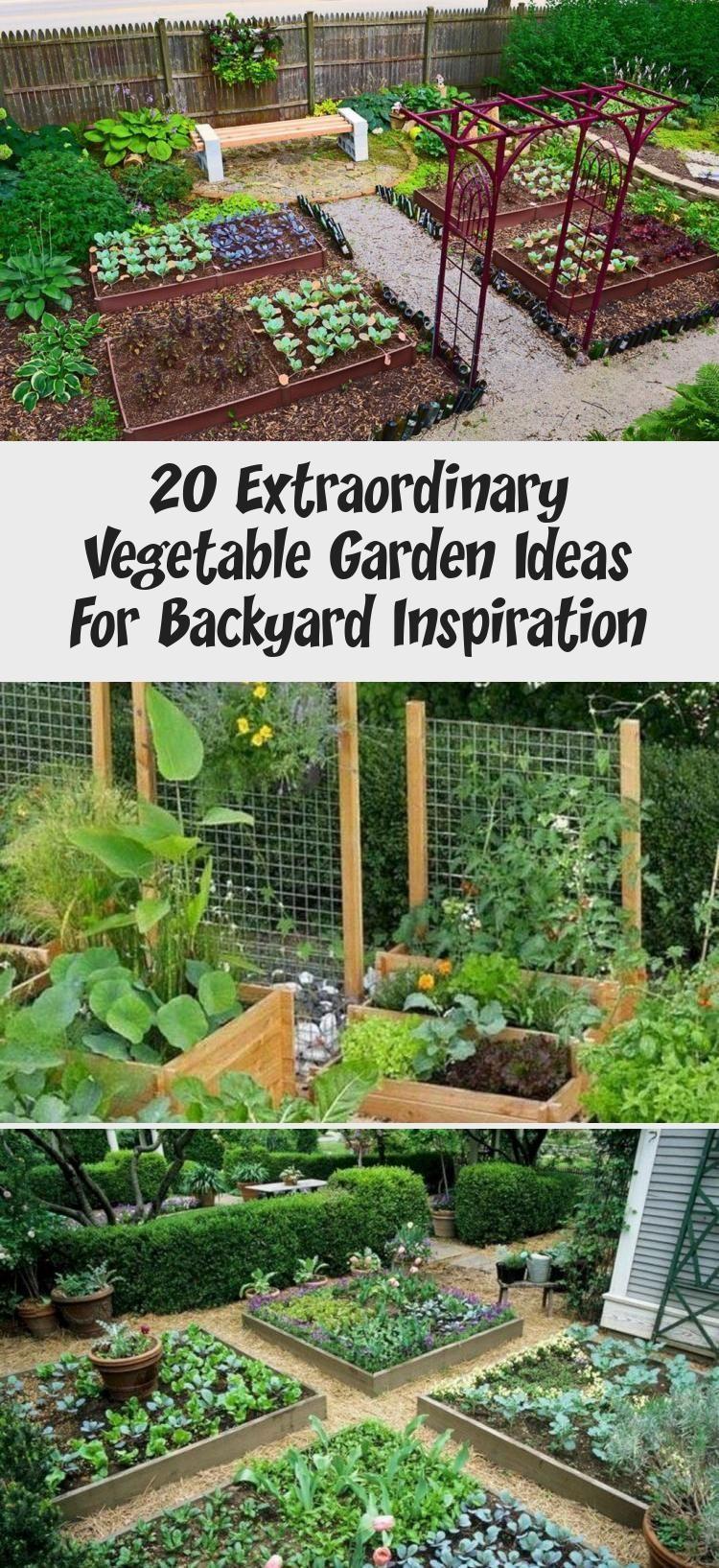 Pin On Garden Ideas Backyard vegetable garden ideas diy
