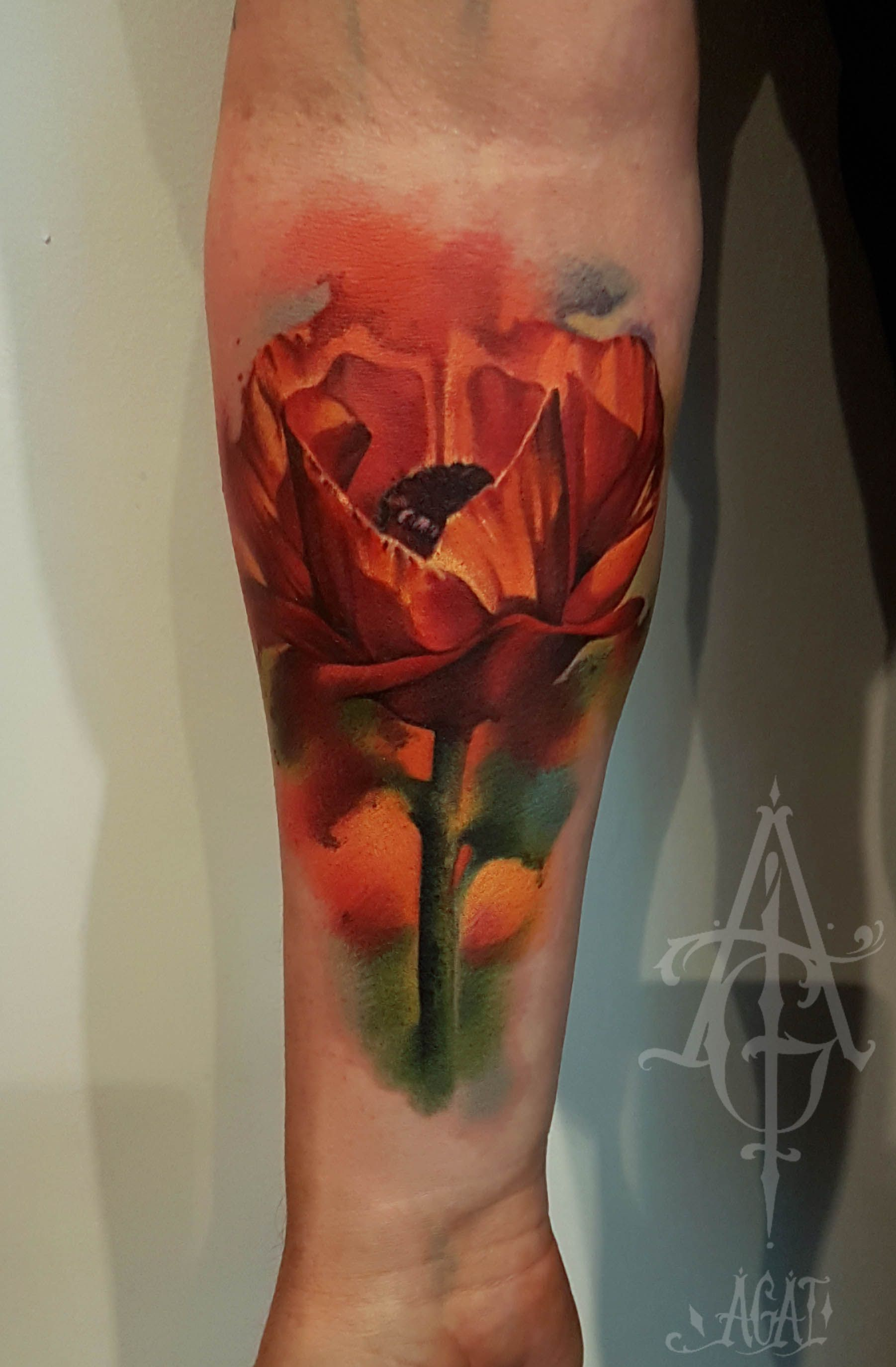 About 5h Done Using Venops2 Tattoo Poppy Flower Tattoos By
