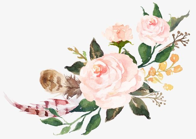Watercolor Pink Flowers Sen Department Watercolor Clipart Pink