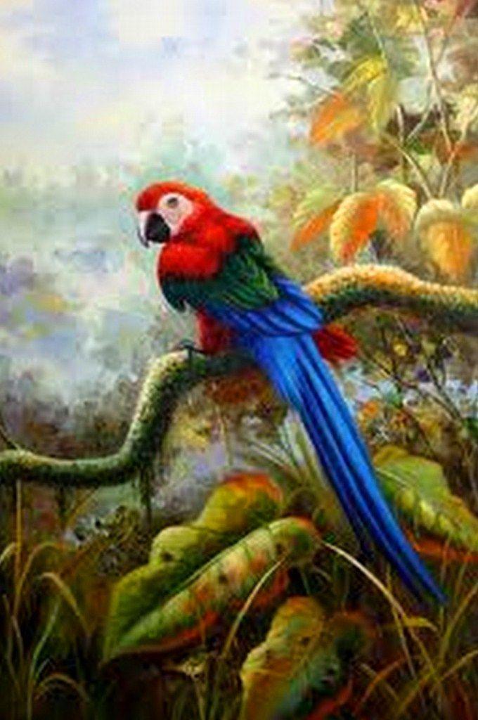paisajesconpajaros  Bhos pintados  Pinterest  Canvases and Bird