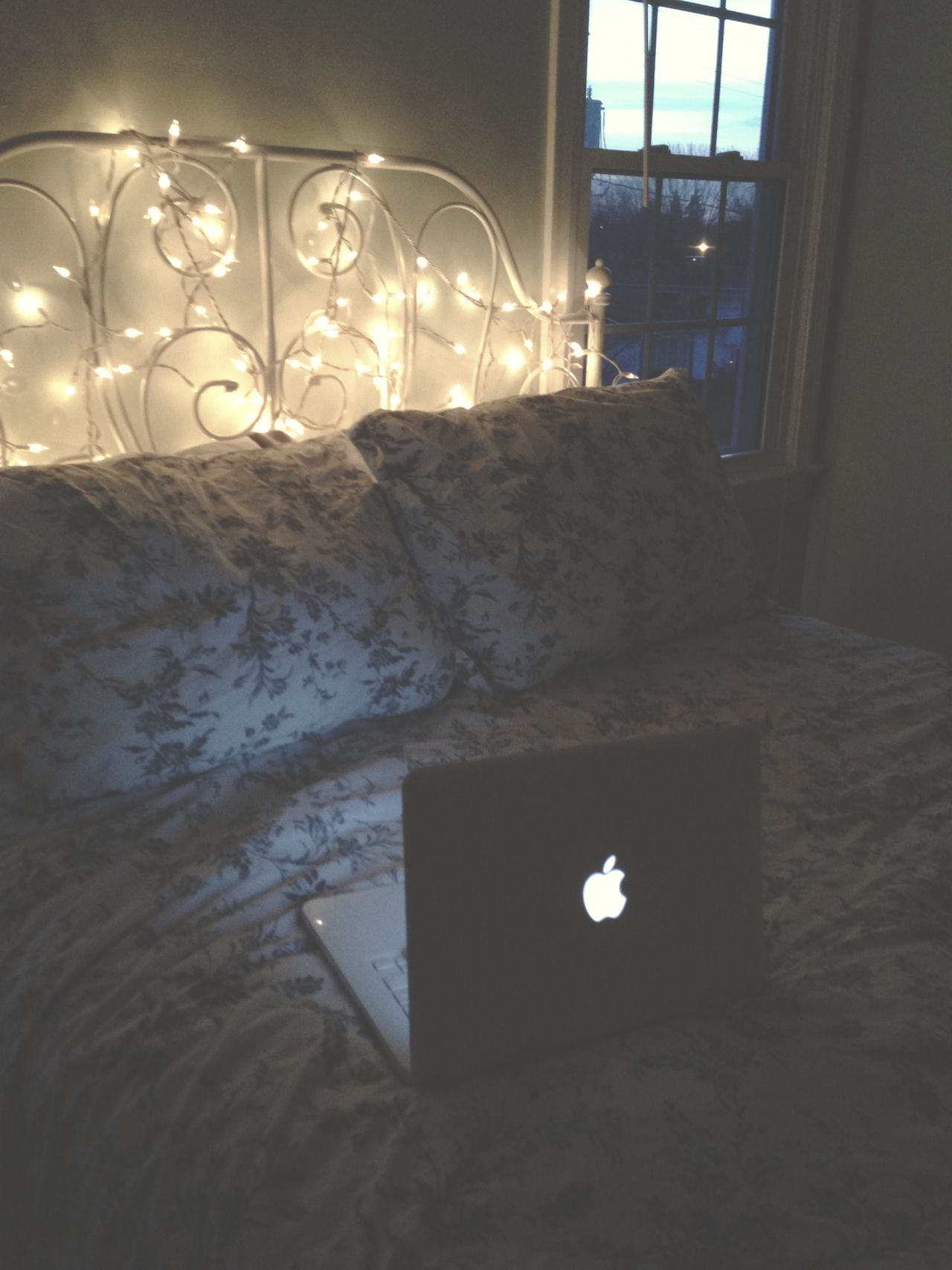 Working from your bed with cozy fairy lights avelingcats