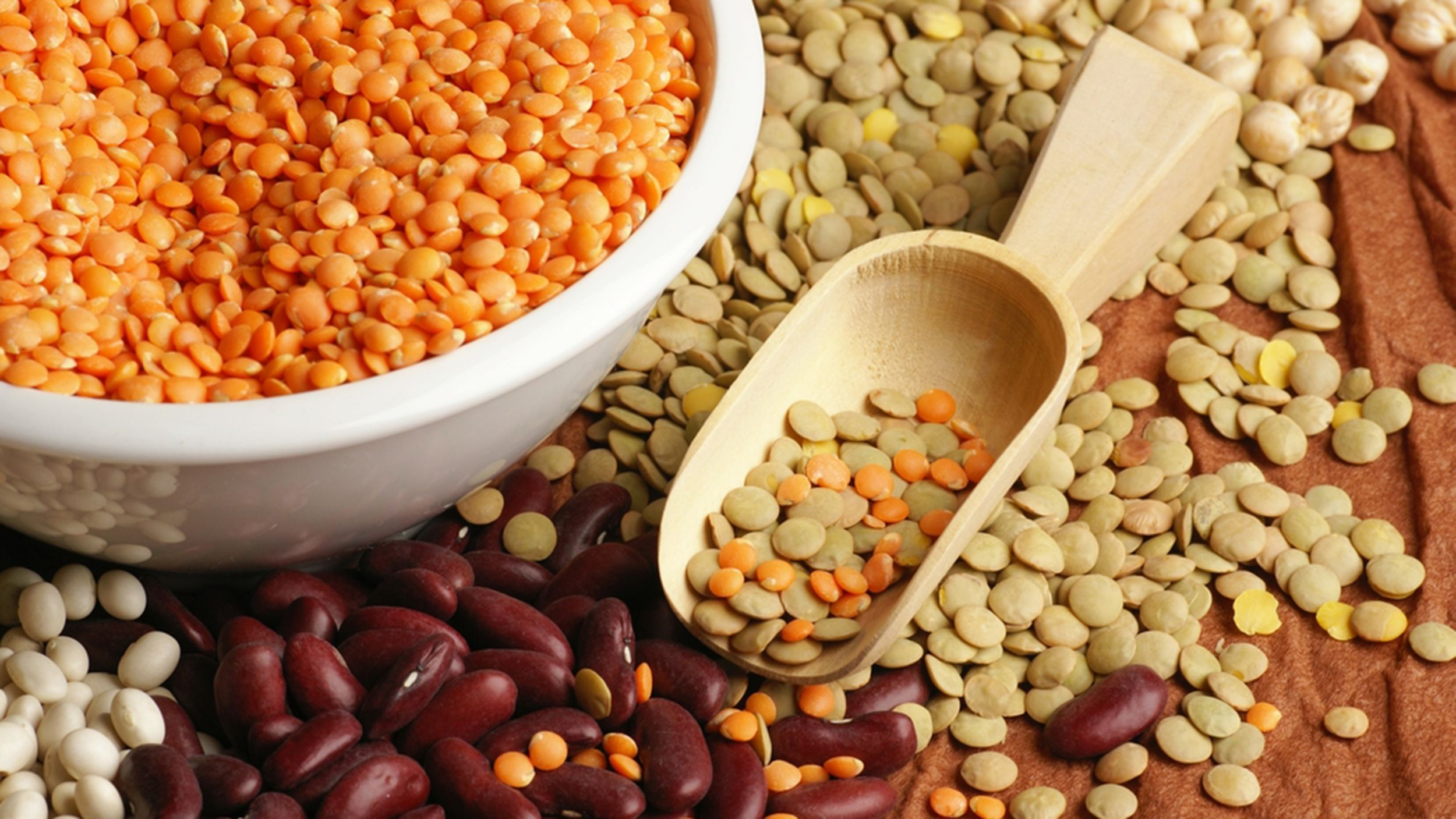 Beans 101 Canned vs dry beans, plus how to cook and store