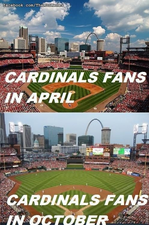 Mlb Memes On St Louis Cardinals St Louis Cardinals Baseball