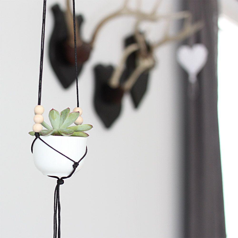 mini hanging planter with cup / modern macrame planter / plant, Hause und Garten