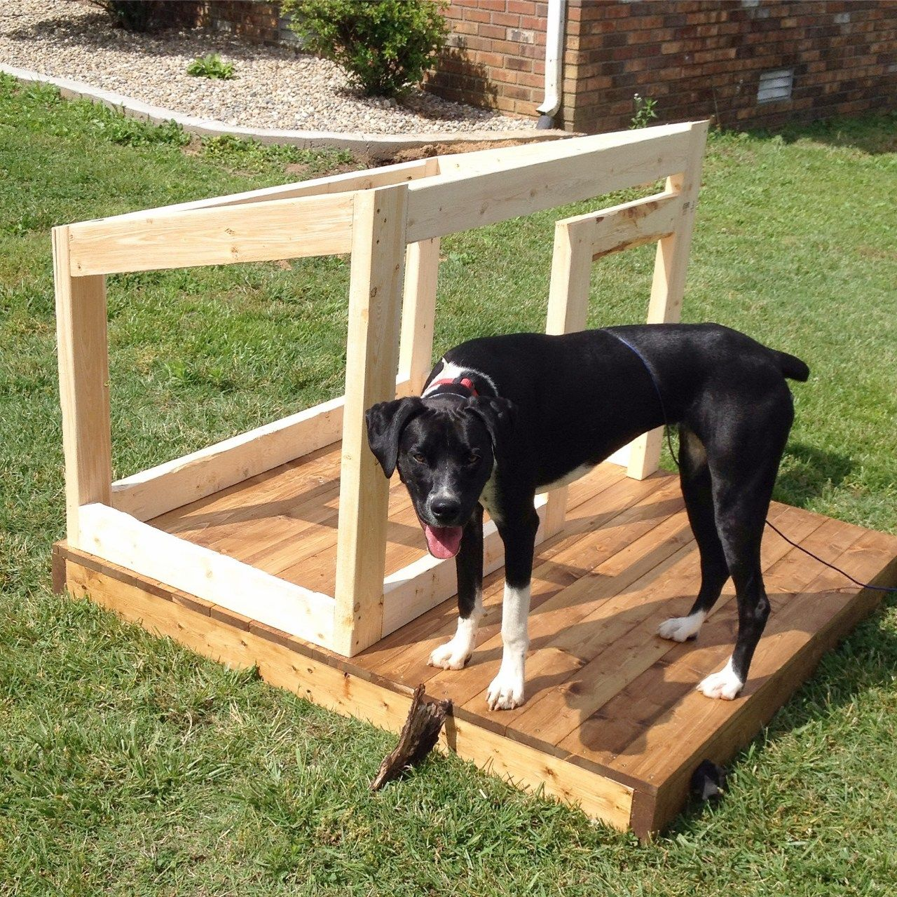 A New Home For Lucy Modern Diy Dog House Small Dog House