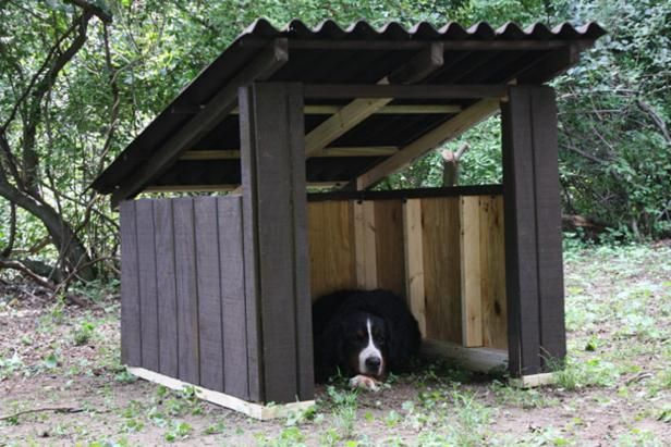 How To Build An Open Air Doghouse Dog House Diy Modern Dog Houses Outdoor Dog