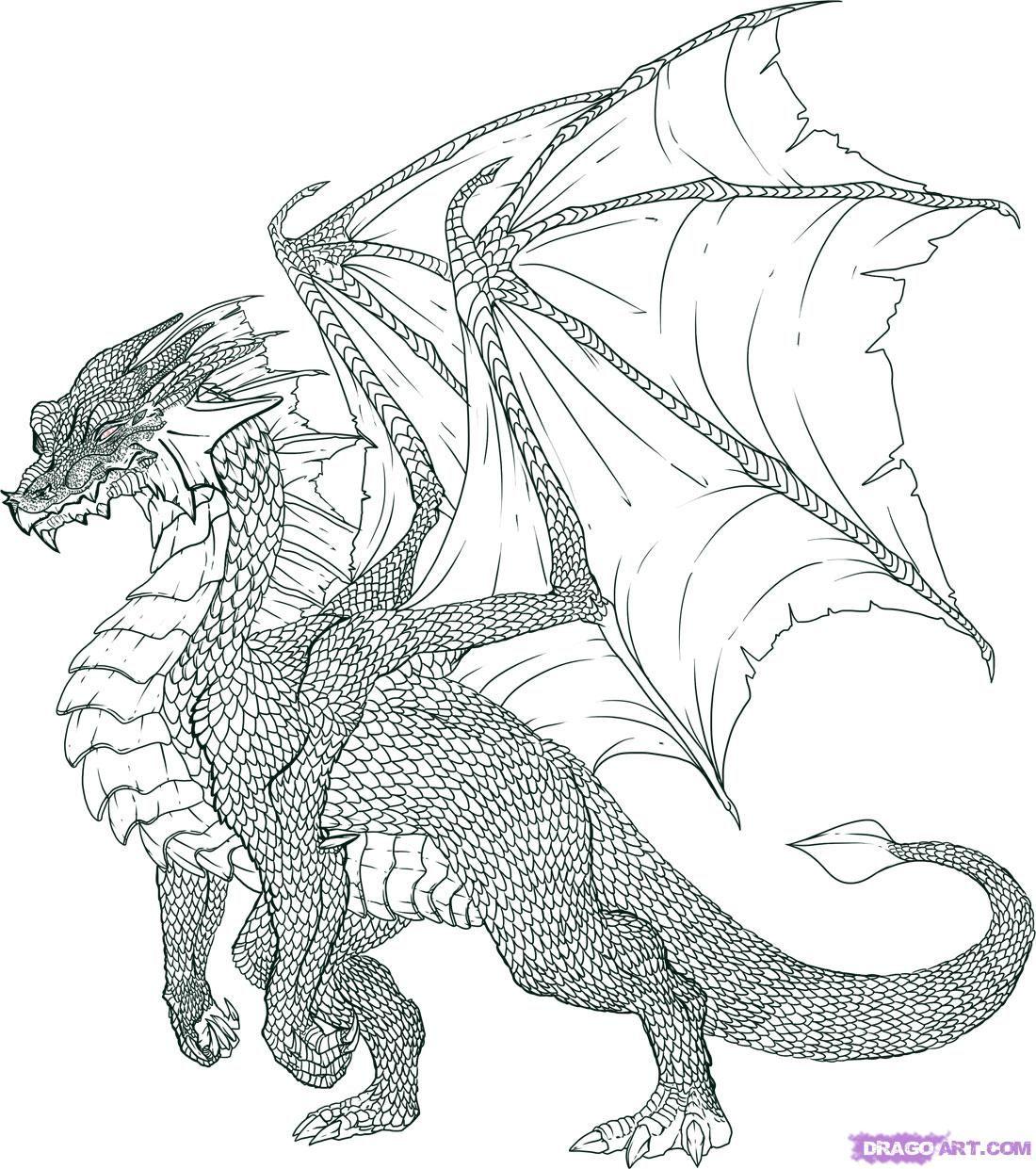Luxe Coloriage Dragon 2 Krokmou   Imprimer et Obtenir une ...