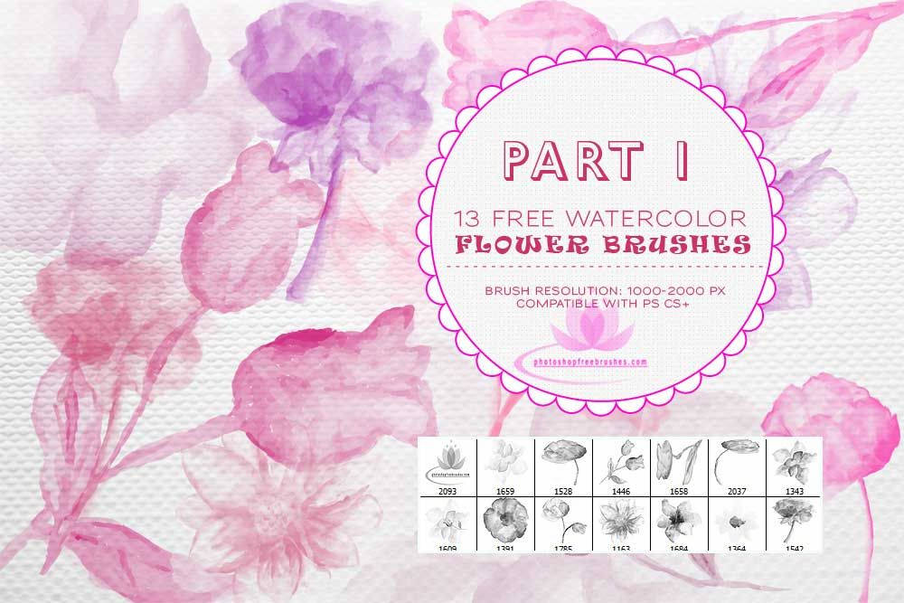 Watercolor Flower Ps Brushes Photoshop Brushes Free Free