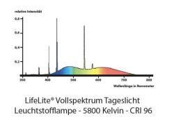 Vollspektrum Tageslicht Spektrum 1