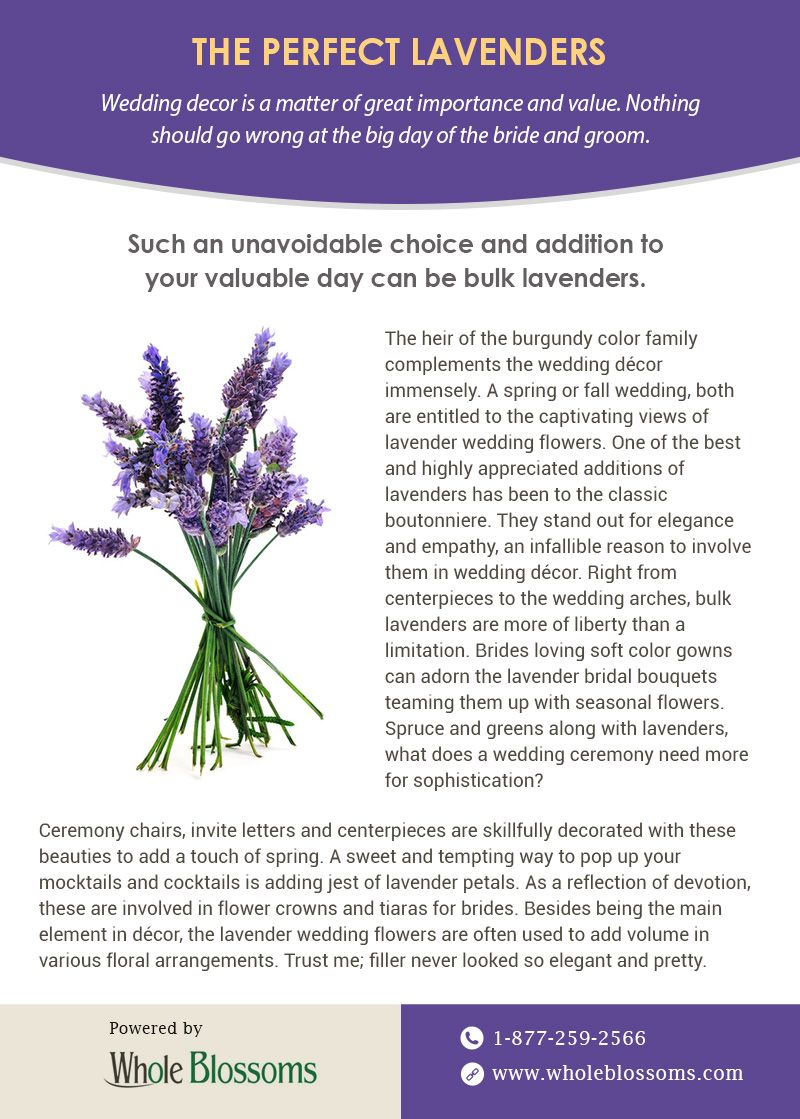 Find Out Perfect Bulk Lavender Flowers Online For Sale Lavender Flowers Flowers Online Lavender Wedding