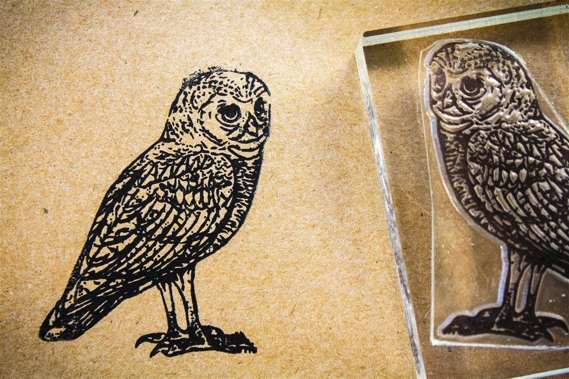 Barn Owl - 2 x 3 Inch Stamp