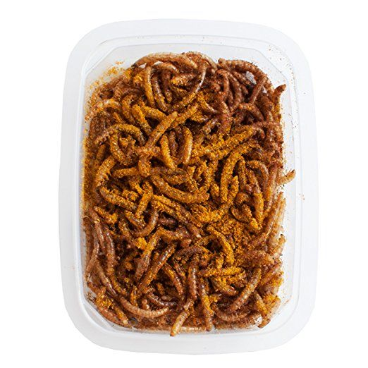 Mehlwürmer Bekämpfung verzehrfertige mehlwürmer curry madras 10g insekten küche