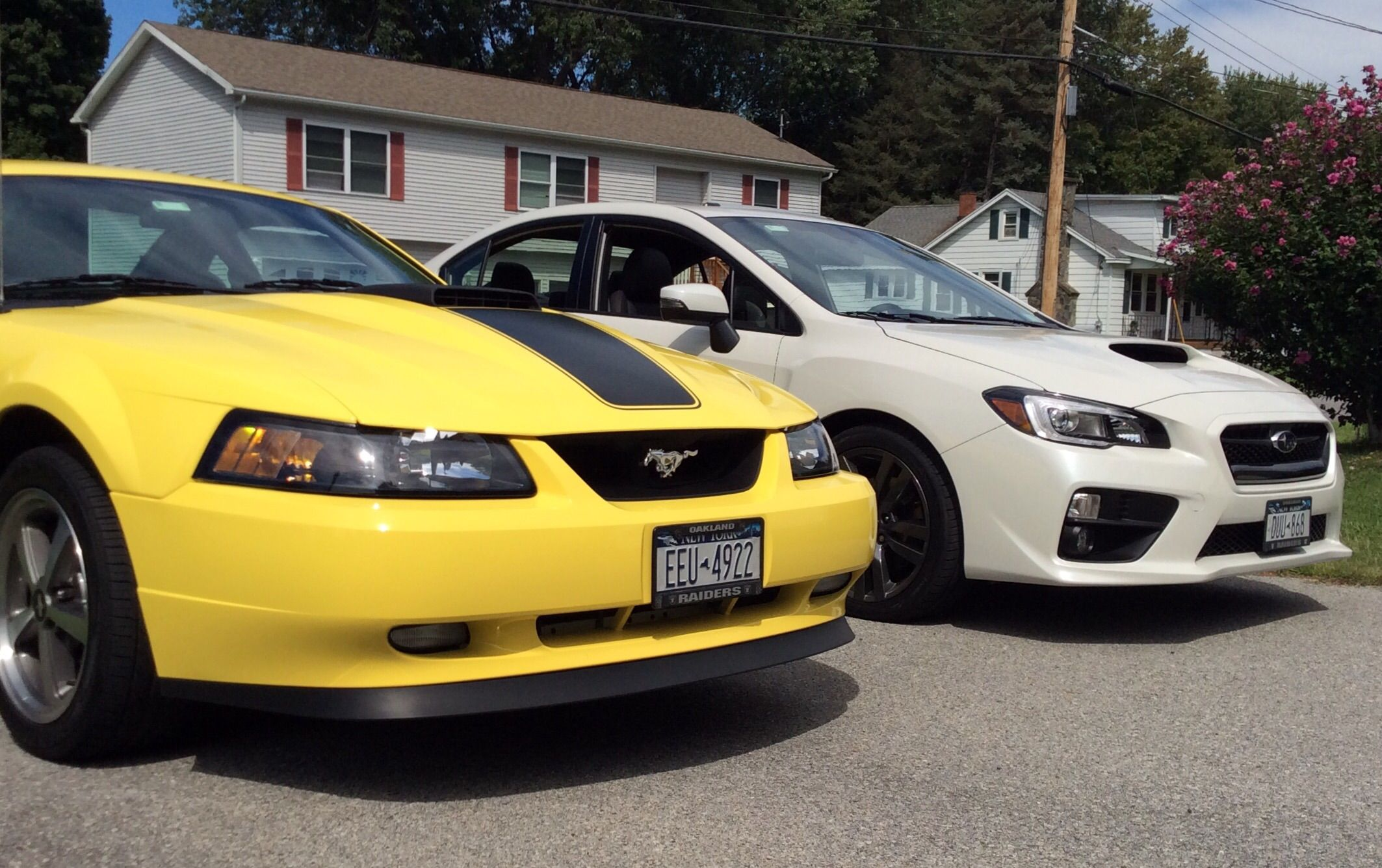 2003 Mustang Mach 1 & 2016 Subaru WRX My garage queen and daily