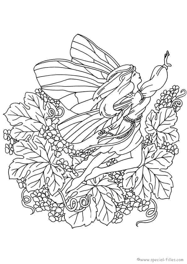 Fee Kleurplaat Color Art Pinterest Adult Coloring Fairy And