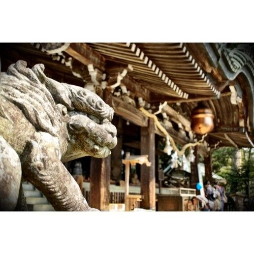 # japan # tsukuba # shrine # shinto shrine Mt @ foo dog foo dog