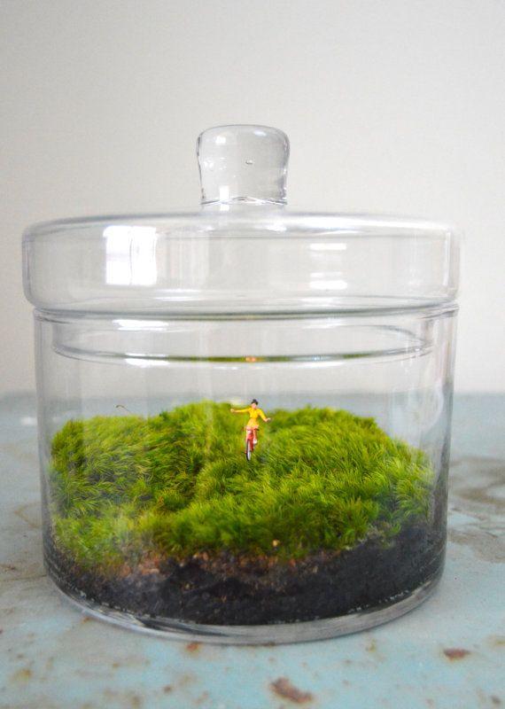 No Hands Terrarium Figurine Moss Terrarium By Tierrasolstudio