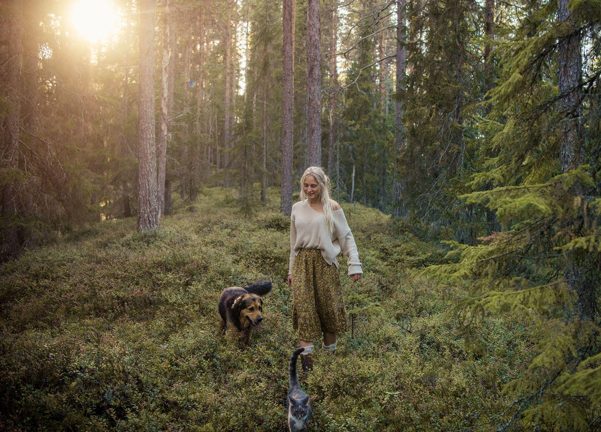 Sveriges bsta hngelstllen hr dejtar vi helst - Expressen